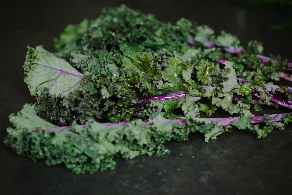 Kale & Crispy Quinoa with Creamy Lime Dressing-6